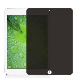 Film verre trempé Espion iPad 2
